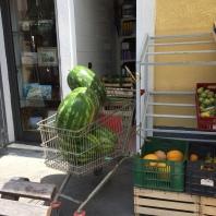Giant watermellon